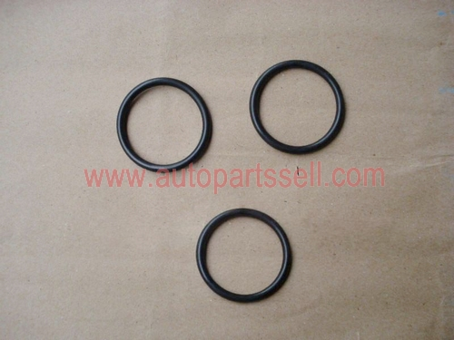 Cummins K19 Water Pipe Rubber O Ring 3028291
