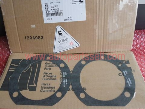 Cummins K38 Fuel Pump Gasket 3069103